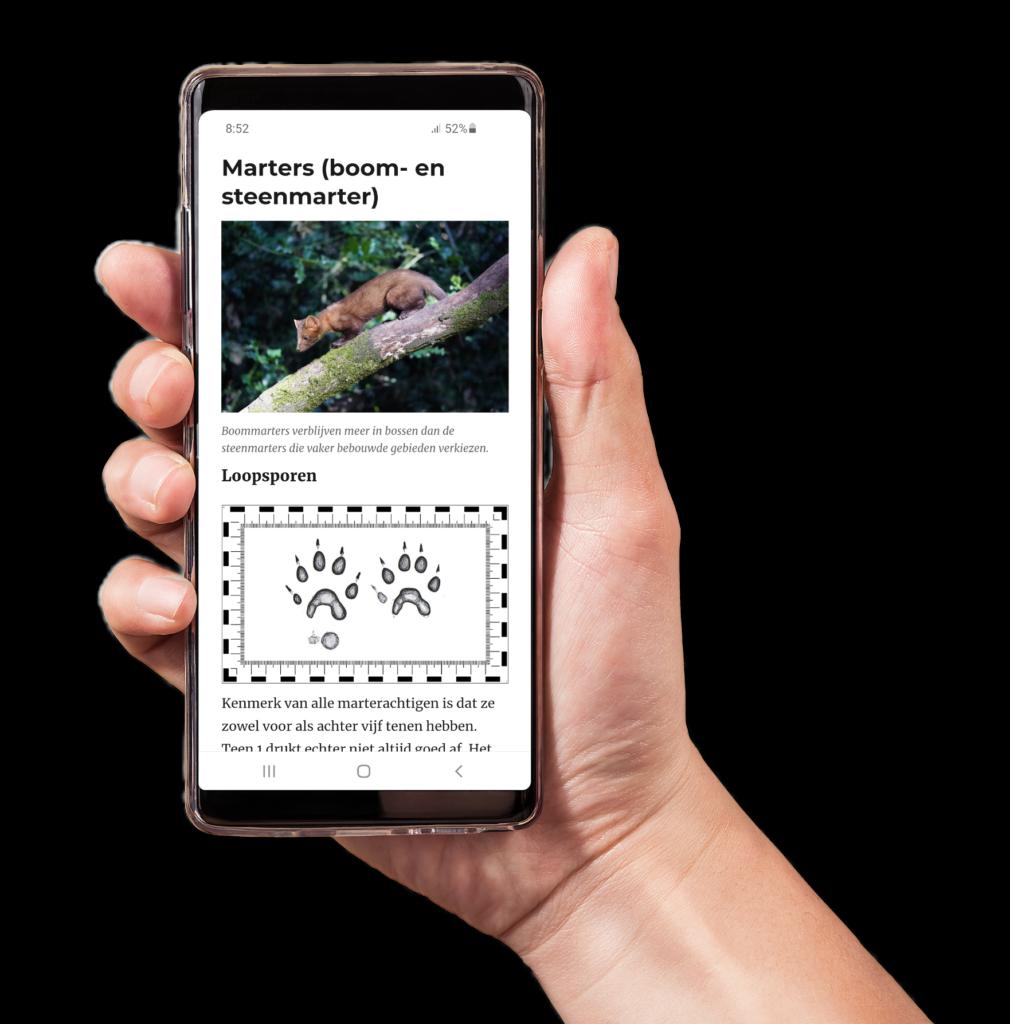 Afbeelding van ene mobiele telefoon met onze digitale sporengids